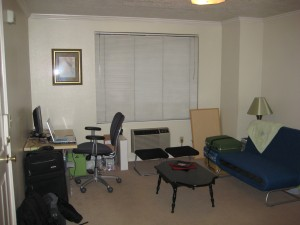 borrowed furniture/D.I./Ikea living room