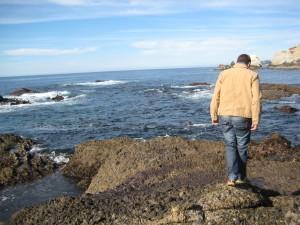 Brett Point Lobos